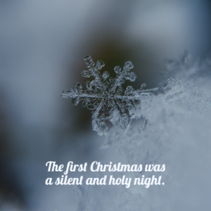 CHRISTMAS BABY: A HOLY NIGHT FOR A HOLY KNIGHT, Photo by Aaron Burden on Unsplash