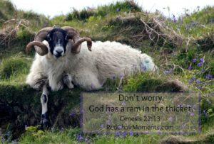 God Is not Quarantined
