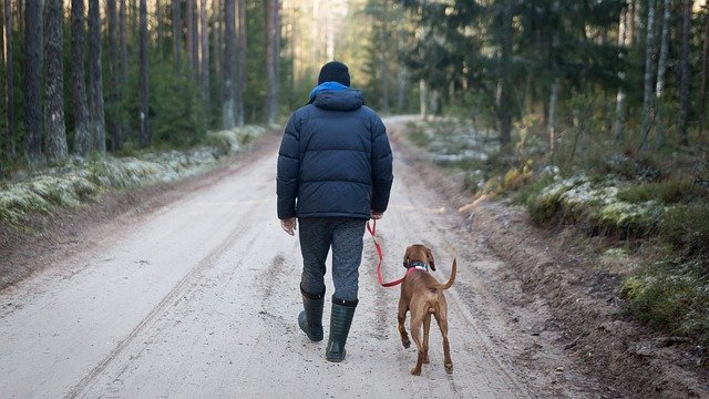 Lessons from a Dog Named Hope: man and dog walking down a snow-covered road https://pixabay.com/photos/outdoors-man-with-dog-tourism-3268637/