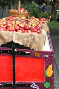 country apple stand